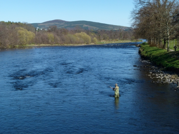 Salmon Fishing on the Spey at Aberlour