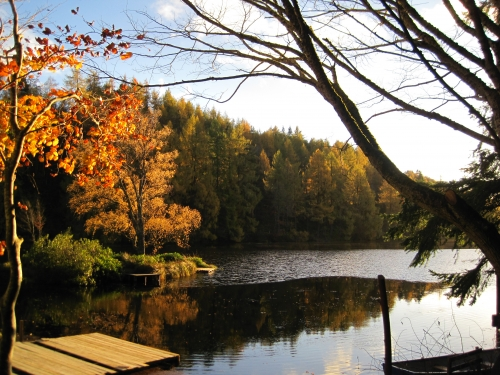 Autumn at Loch Park