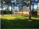 Aberlour Gardens set among the trees